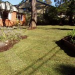 Lawns & Soft Landscaping - Daly Rd Wahroonga (after lawn and landscaping)