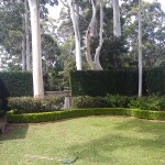 Garden edging & Soft landscape work