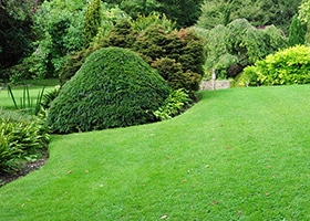 lawn mowing north shore, lawn mowing north shore sydney, lawn mowing service north shore, north shore lawn mowing services, lawn keepers north shore